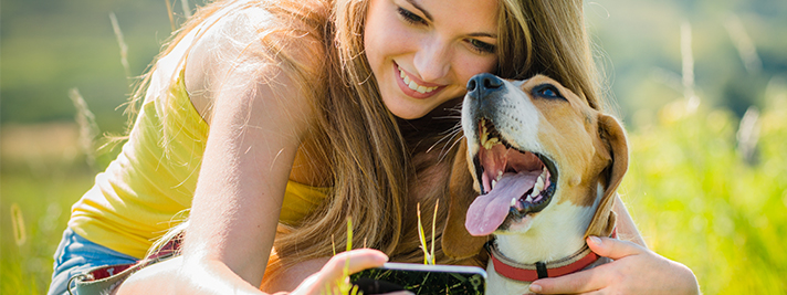 Dental and oral care for pets - what you should know