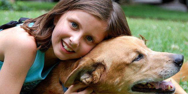 Animal Health Week | Hastings Veterinary Hospital