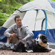 6 Tips on Caring for Your Dog on Summer Camping Trips