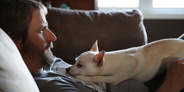 15 Scientific Reasons Why Owning a Dog is Awesome | Hastings Veterinary Clinic