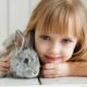 Indoors or Outdoors? Where to Raise Your Pet Rabbit | Hastings Veterinary Hospital